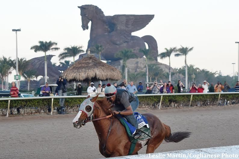 cal-chrome-final-breeze-pegasus